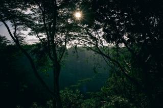 Sayan, Sun, Bali, Ubud, Valley