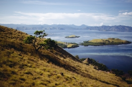 Labuan Bajo, Flores, Komodo, Hiking, Diving
