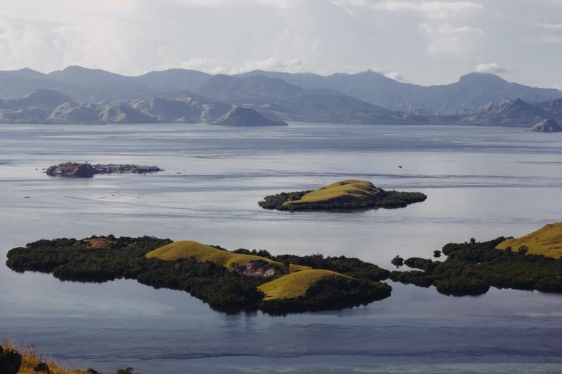 Komodo, Islands, Rinca, Diving, Flores, Labuan Bajo