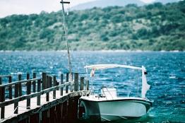 Nikko Karki Menjangan Island Blog_-13