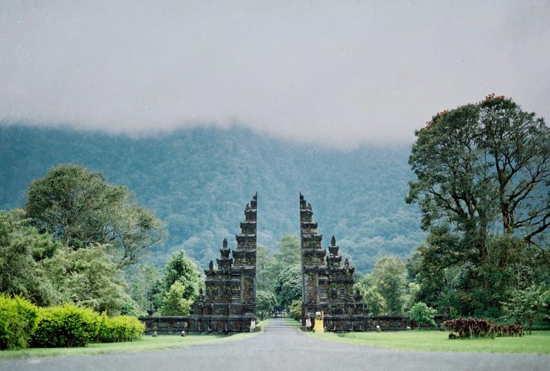 Nikko Karki Menjangan Island Blog_-3