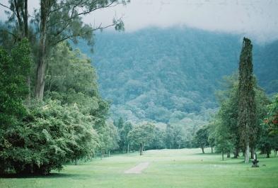 Nikko Karki Menjangan Island Blog_-4