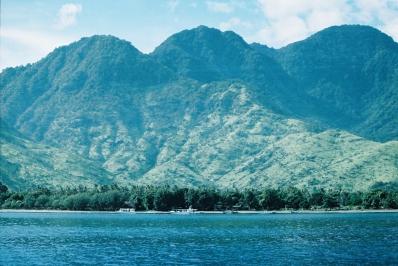 Nikko Karki Menjangan Island Blog_-5