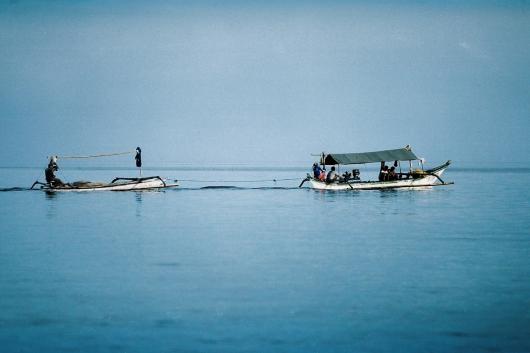 Nikko Karki Menjangan Island Blog_-6